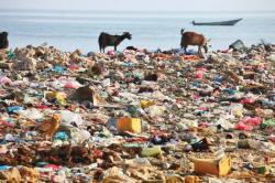 Trash clipart land pollution