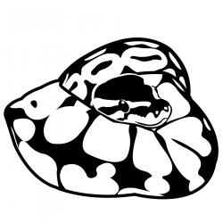 Python clipart cartoon