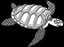 Drawn sea turtle seahorse