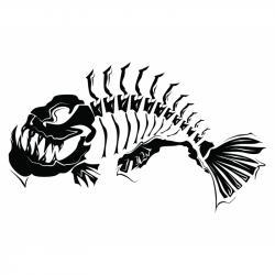 Piranha clipart fish skeleton