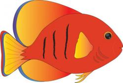 Coral clipart pet fish