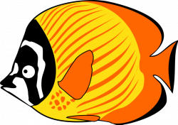 Butterflyfish clipart colourful fish