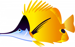 Pufferfish clipart colored fish