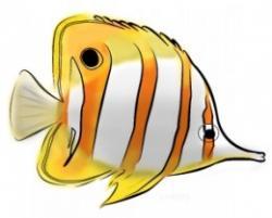 Butterflyfish clipart sea fish