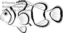 Clownfish clipart tropical fish