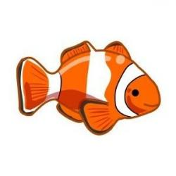 Clownfish clipart realistic fish