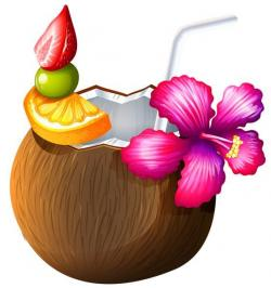 Coconut clipart hawaii