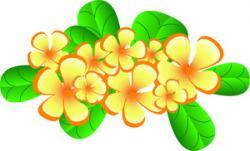 Plumeria clipart hawaiian flower
