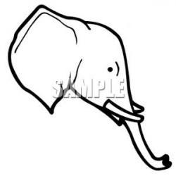 Tusk clipart head