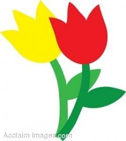 Tulip clipart