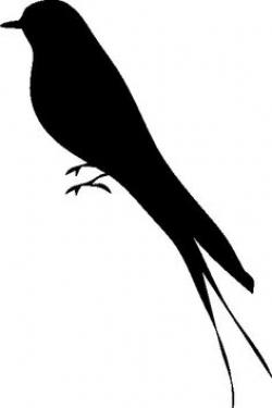 Finch clipart bird shadow