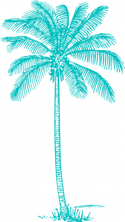 Palm Tree clipart turquoise