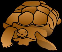 Turtoise clipart cartoon