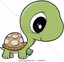 Tortoise clipart baby boy
