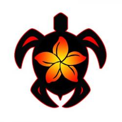 Plumeria clipart hawaiian sea turtle