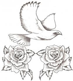 Turtle Dove clipart