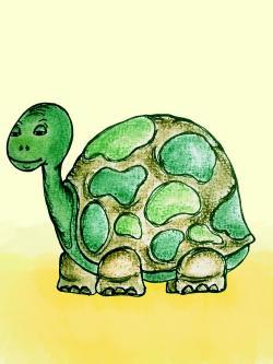 Turtoise clipart zoology
