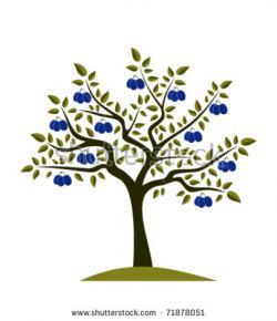 Ume Tree clipart
