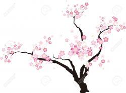 Cherry Blossom clipart plum blossom
