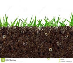 Underground clipart dirt