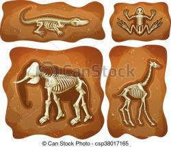 Underground clipart fossil