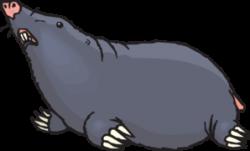 Mole clipart underground