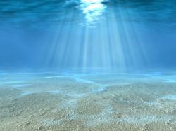 Underwater clipart