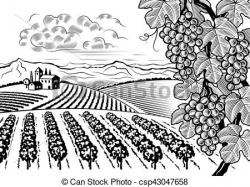 Vineyard clipart black and white