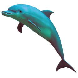 Vaporwave clipart dolphin