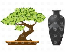 Japanese clipart bonsai tree