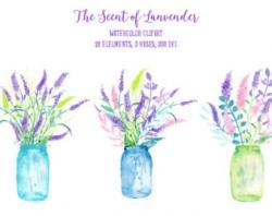 Lilac clipart vase