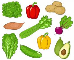 Avocado clipart individual
