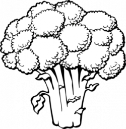 Parsley clipart black and white