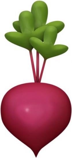 Vegetable clipart beats