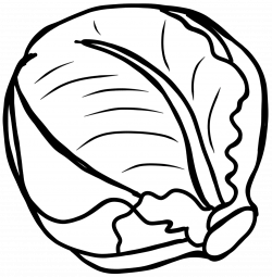 Cabbage clipart black and white