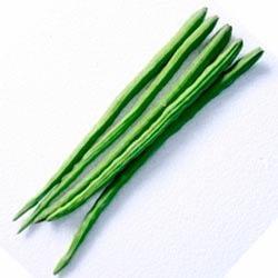Vegetable clipart drumstick