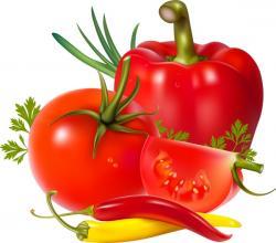 Fresh clipart vegatable