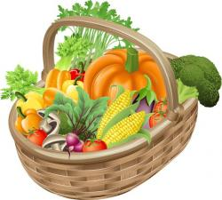 Fresh clipart vegetable basket