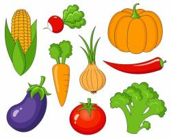 Vegetables clipart fruits and vegetable