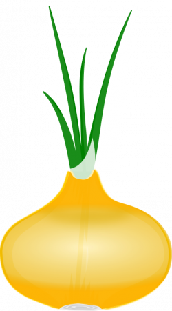 Asparagus clipart single
