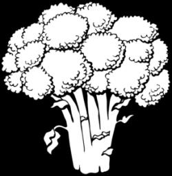 Cauliflower clipart outline