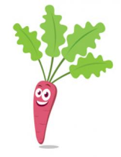Carrot clipart individual