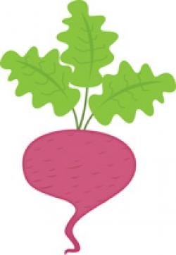 Vegetable clipart petchay
