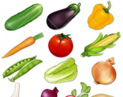 Vegetables clipart popular