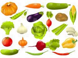 Vegetable clipart popular