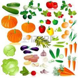 Vegetable clipart vegetable gardening