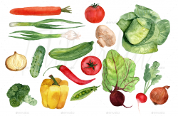 Vegetables clipart watercolor