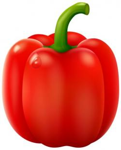 Capsicum clipart fruit and vegetable