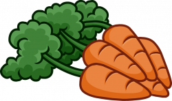 Carrot clipart bunch carrot
