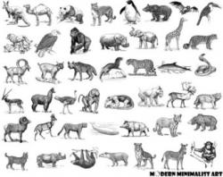 Exotic clipart wildlife animal